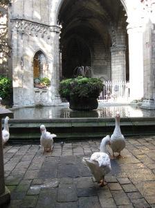 Patio de la catedral de Barcelona