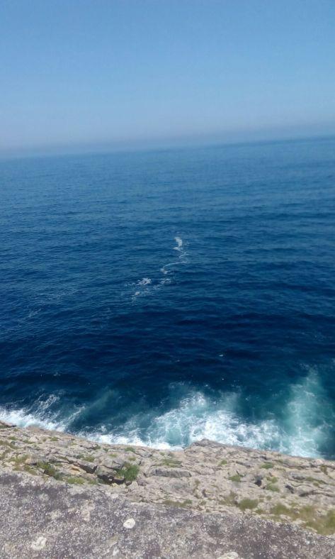 Hortensias y mar