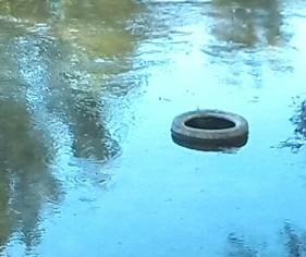 Neumático aprendiendo a nadar