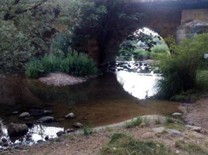 Puente y río
